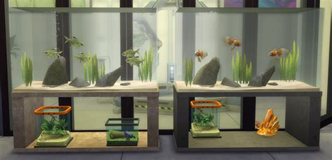 My Sims 4 Blog: Fish Tanks and Sea Urchins by TheShed